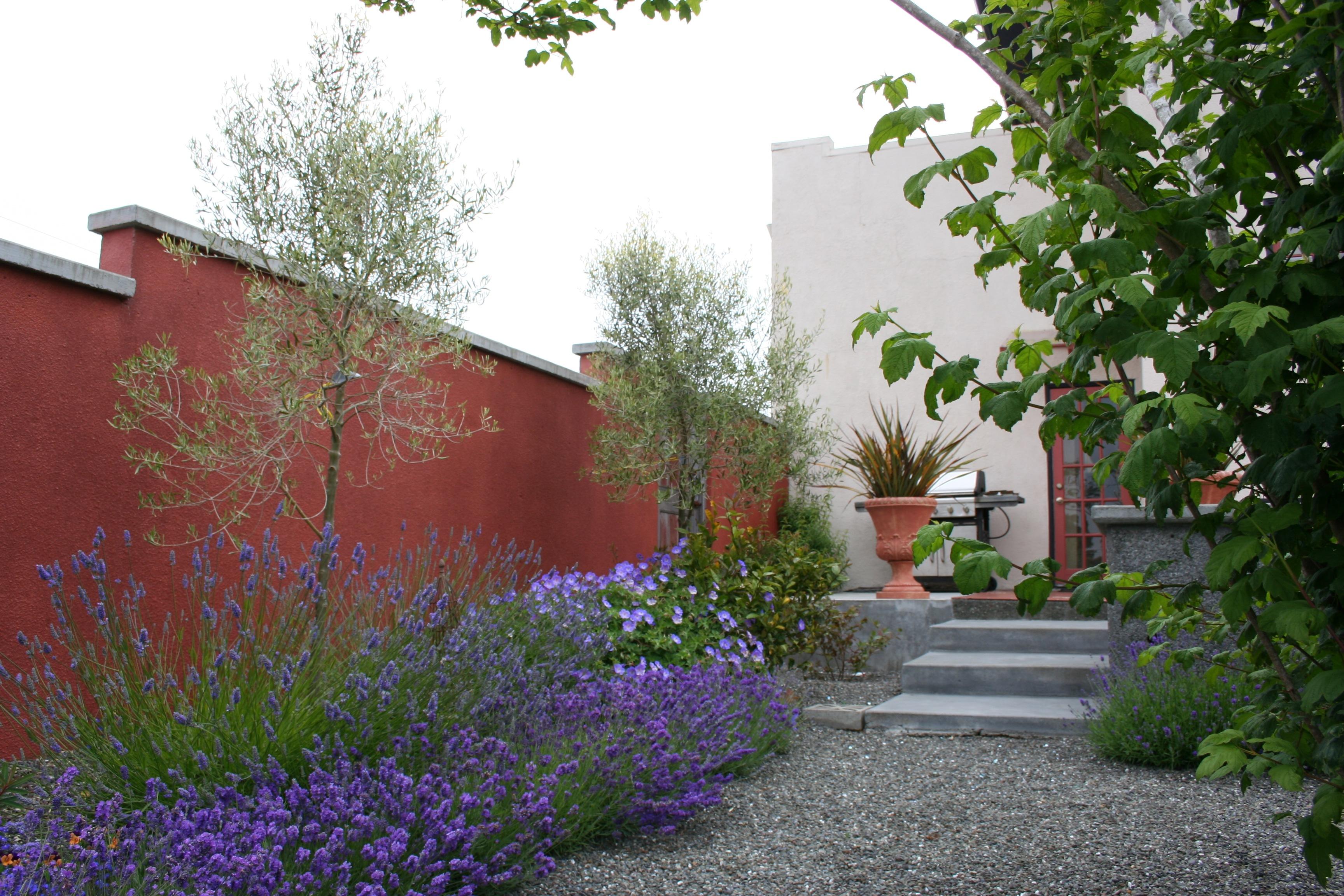 Taman Rumah Minimalis Mediterania